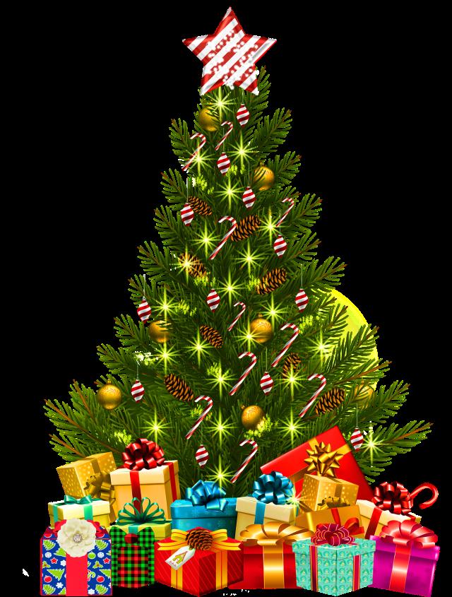 christmas-tree-with-lights-3824892_1920